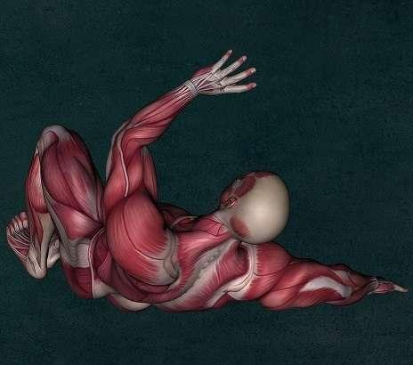 筋膜リリース(ファシアほぐし)
